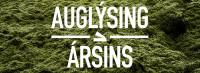 Auglýsing ársins
