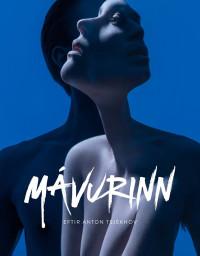 Mávurinn